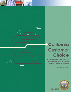 "California Customer Choice: An Evaluation of Regulatory Framework Options for an Evolving Electricity Market"", which is now also known as the ""Green Book"""